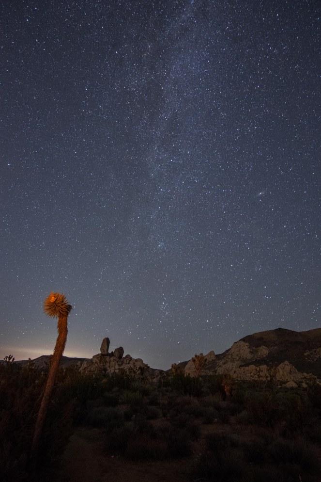 Milky Way Andromeda starry sky stars Joshua tree national park