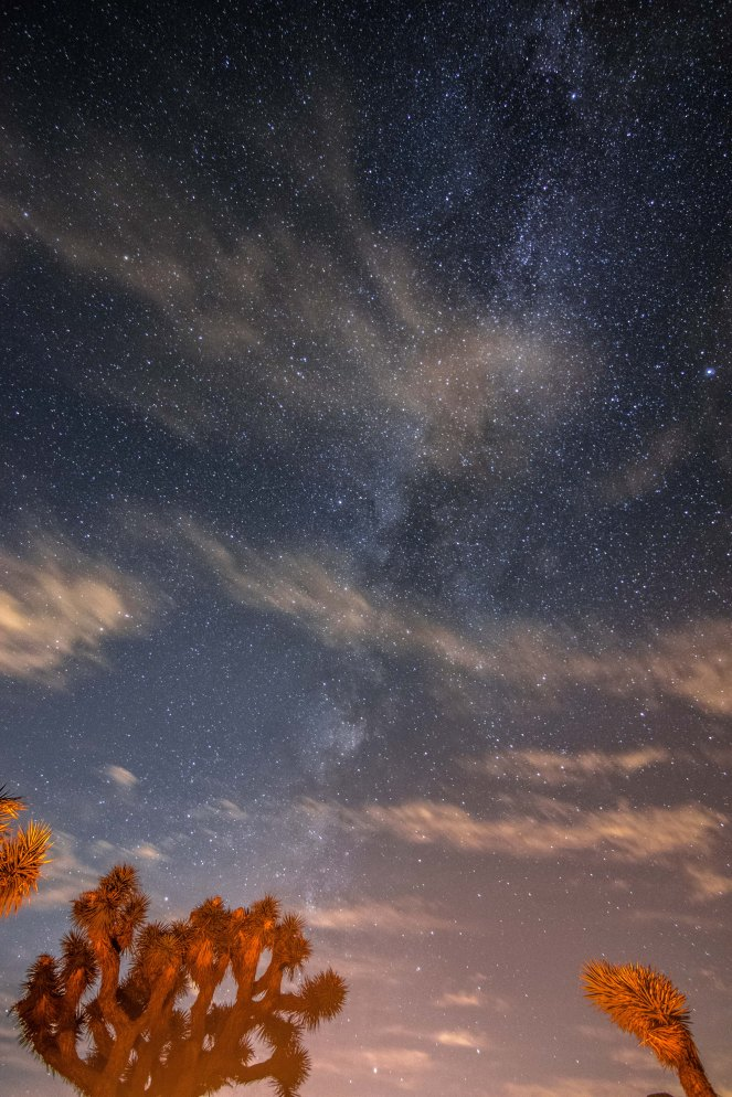 Milky Way galaxy campfire Joshua tree national park stars starry sky