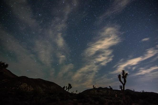 stars starry night sky constellation constellations Joshua tree