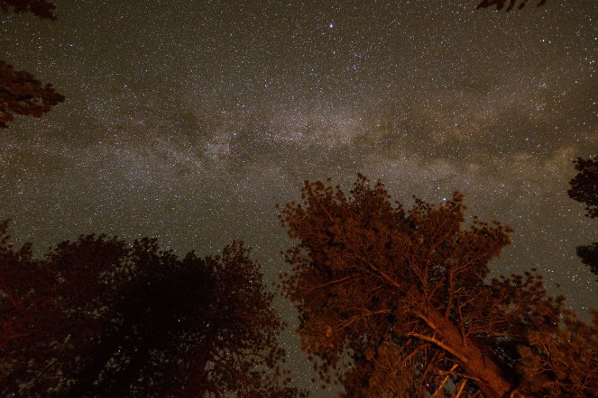 The Milky Way shines over Inyo National Forest near June Lake and Obsidian Dome. Milky Way galaxy. Stars. Starry Sky.