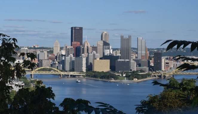 pittsburgh downtown skyline blue sky blue water river bridges plants