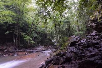 cucumber run creek stream forest woods woodlands rocks boulders flowing water Ohiopyle state park