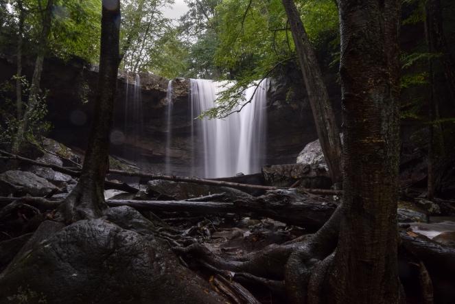 cucumber falls bridal veil waterfall rocks trees forest creek stream ohiopyle state park