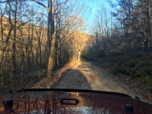 woods forest dirt road hunting road service road