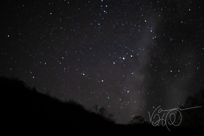 blue and white stars shine in the night sky near the Milky Way