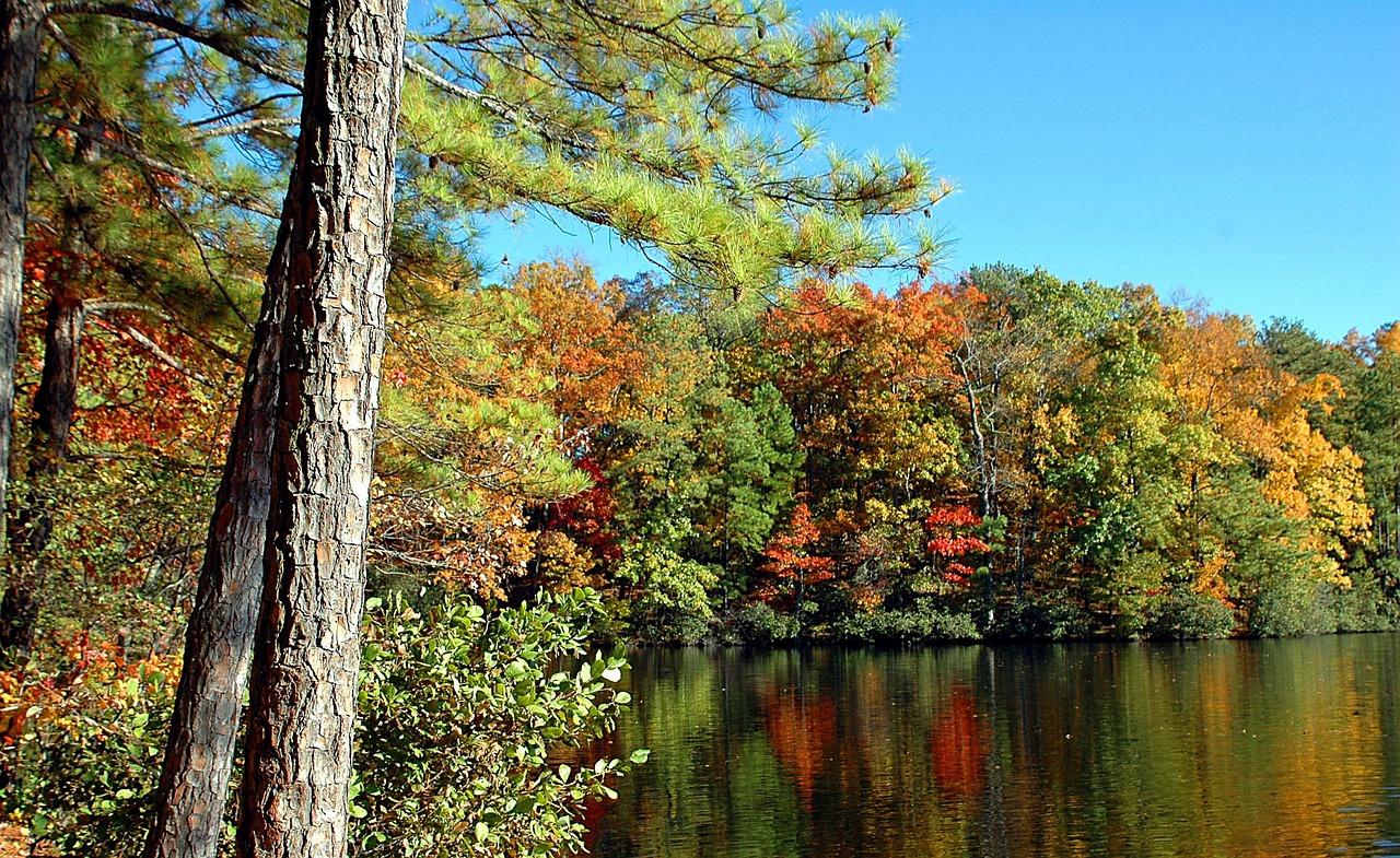Fall colors reflect off a small lake in North Georgia