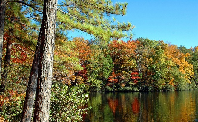Fall colors reflect off a small lake in North Georgia