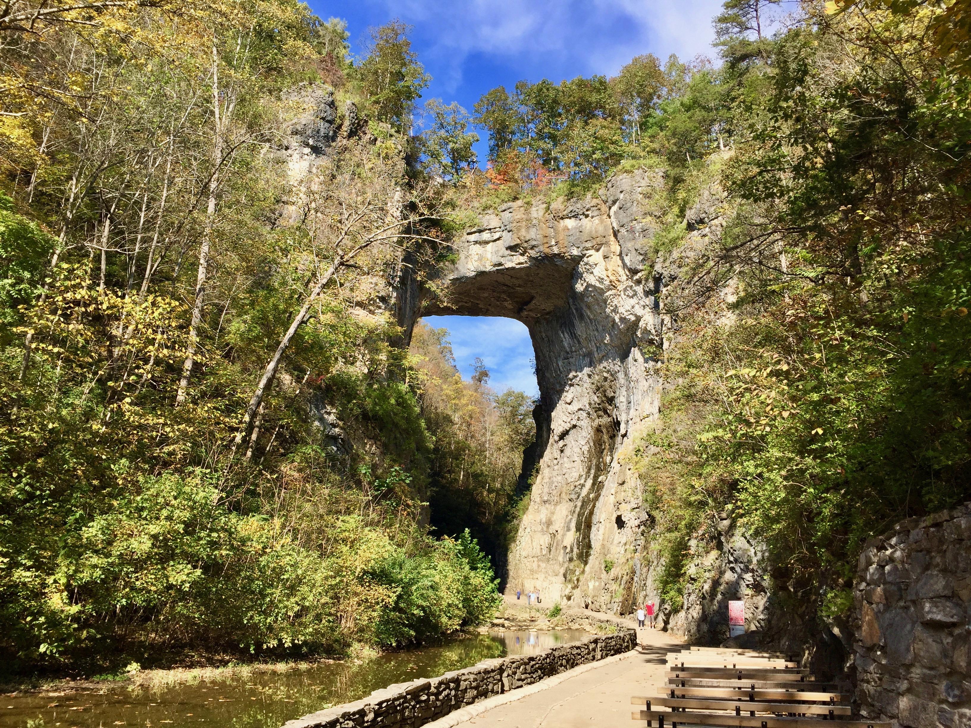 natural bridge state park virginia rock bridge granite trees creek forest